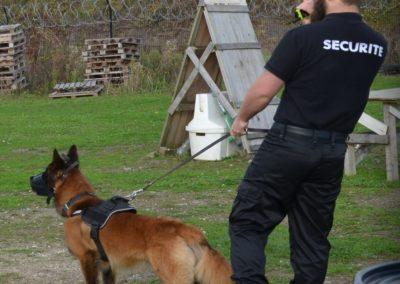 Maître-chien (d'avalanche, sécurité civile)
