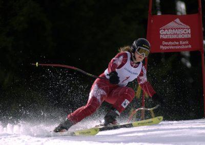Professionnel de sport de glisse, Skieur professionnel