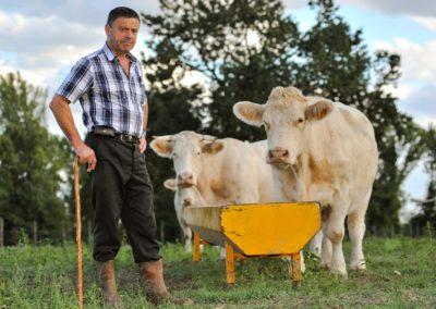 Agriculteur de production laitière