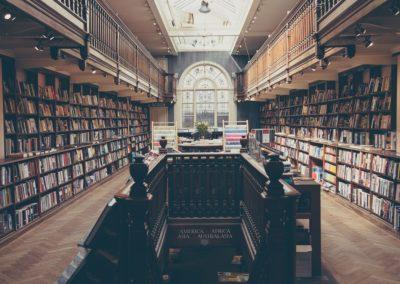 Bibliothécaire, Bibliothécaire documentaliste, Bibliothéconomiste