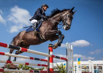 Cavalier (d'entraînement, dresseur de chevaux, professionnel)