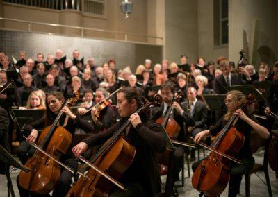 Musicien, Musicien (de variétés, d'orchestre, soliste), Musicien-accompagnateur