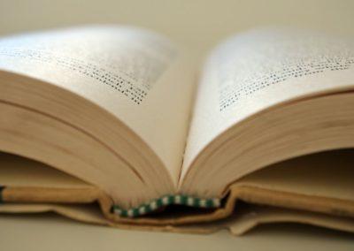 Lecteur