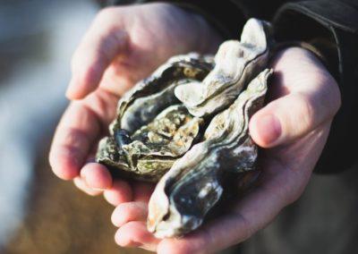 Ostréiculteur (huîtres)