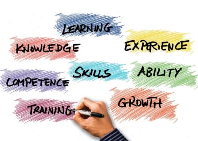 Les compétences professionnelles de la réussite